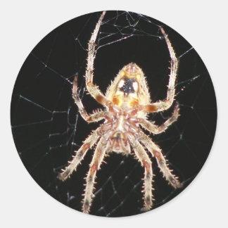 Garden Orb Weaving Spider Round Sticker