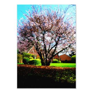 Garden Party Invitaion Card 9 Cm X 13 Cm Invitation Card