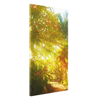 Garden Path Stretched Canvas Prints