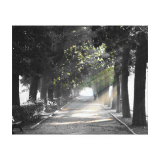 Garden Path Gallery Wrapped Canvas