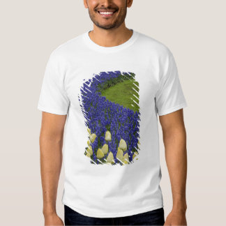 Garden pattern of Grape Hyacinth flowers and 2 Tshirt