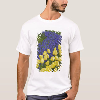 Garden pattern of Grape Hyacinth flowers and T-Shirt