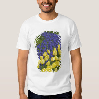 Garden pattern of Grape Hyacinth flowers and Tee Shirts