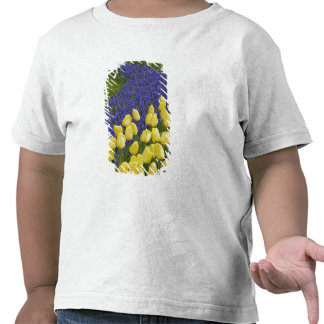 Garden pattern of Grape Hyacinth flowers and T-shirt