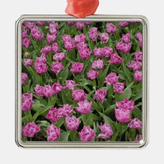Garden pattern of tulips, Keukenhof Gardens, Christmas Ornament