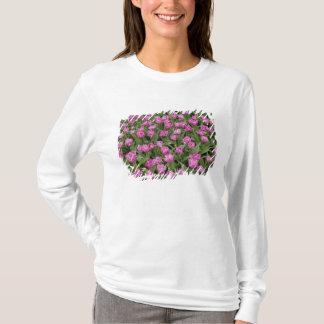 Garden pattern of tulips, Keukenhof Gardens, T-Shirt
