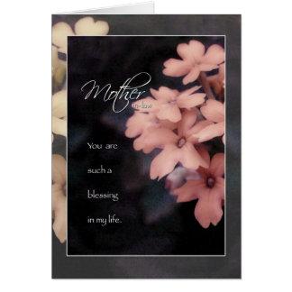 Garden Phlox Flower Birthday for Mother in Law Greeting Card