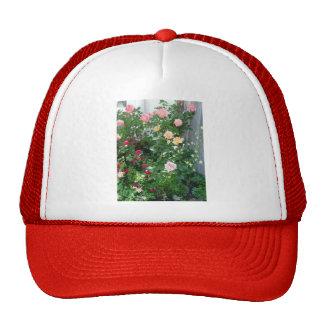 garden roses trucker hats