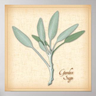 Garden Sage Herb Poster