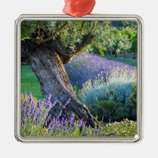 Garden scenic with flowers, France Christmas Ornament