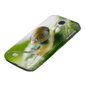 Garden snail on radish, California Galaxy S4 Case