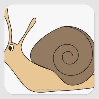 Garden Snail Square Sticker
