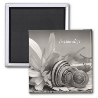 Garden Snails On Daisy Flower With Name Square Magnet