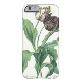 Garden Tulip, from 'Opera Botanica', engraved by L Barely There iPhone 6 Case