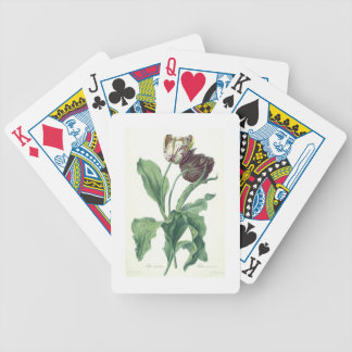 Garden Tulip, from 'Opera Botanica', engraved by L Bicycle Playing Cards