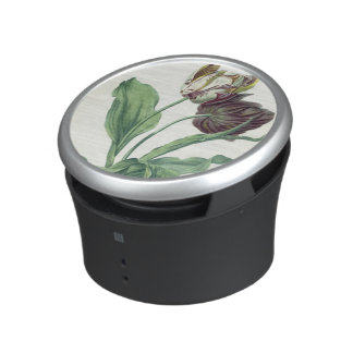 Garden Tulip, from 'Opera Botanica', engraved by L Bluetooth Speaker