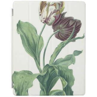 Garden Tulip, from 'Opera Botanica', engraved by L iPad Cover