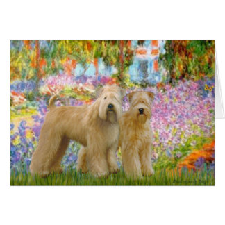 Garden - Two Wheaten Terriers Card