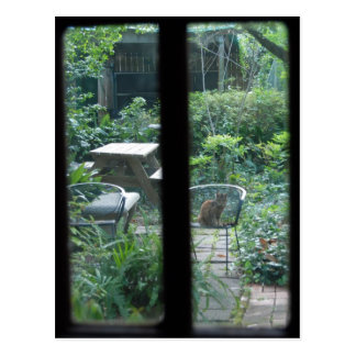 Garden View ©2008 Postcard