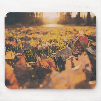 Garden View Mouse Pad