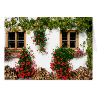 Garden Wall Note Card, envelopes included Note Card