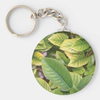 Gardenia Greenery Keychain