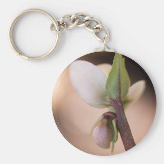 gardenia in the garden basic round button key ring