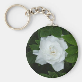 Gardenia Key Ring Basic Round Button Key Ring