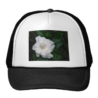 Gardenia Print Cap Trucker Hat