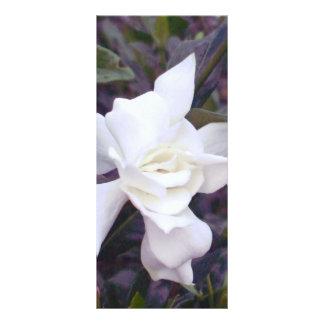 Gardenia tints full color rack card