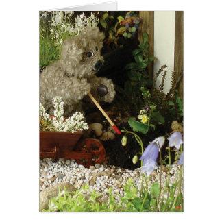 Gardening-card Card