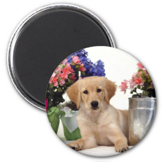 Gardening Golden Retriever Puppy Magnet
