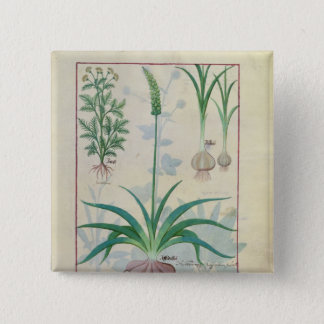 Garlic and other plants 15 cm square badge