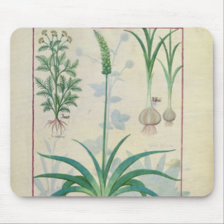 Garlic and other plants mouse mat