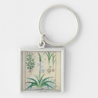 Garlic and other plants Silver-Colored square key ring