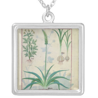Garlic and other plants silver plated necklace