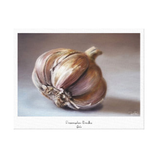 Garlic classic vegetable still life oil paint canvas print