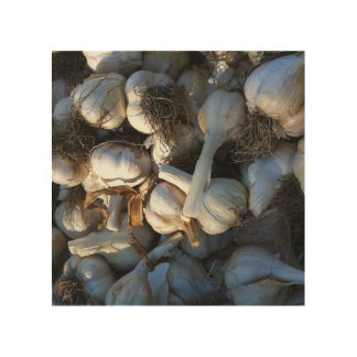 Garlic Cloves - Fresh from the Garden Wood Canvases
