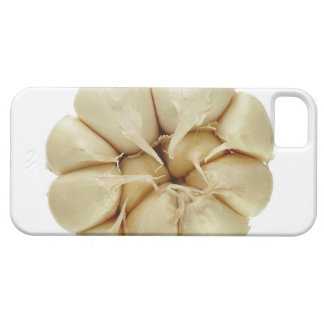 Garlic  isolated on white background, DFF image, Case For The iPhone 5