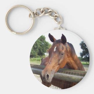 garnet key ring