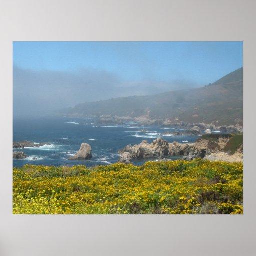Garrapata State Park, California Poster