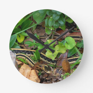 Garter Snake Wildlife Wall Clock
