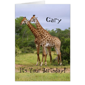 "Gary ""Go Wild"" Happy Birthday Giraffes Card"