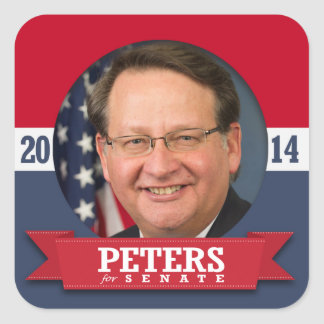GARY PETERS CAMPAIGN STICKERS