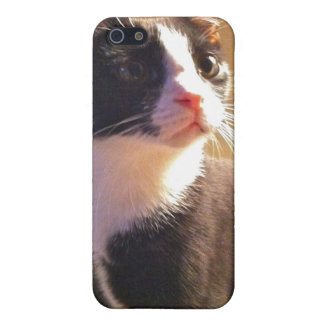 Gary the Cat iPhone 5 Case