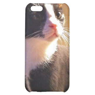 Gary the Cat Cover For iPhone 5C