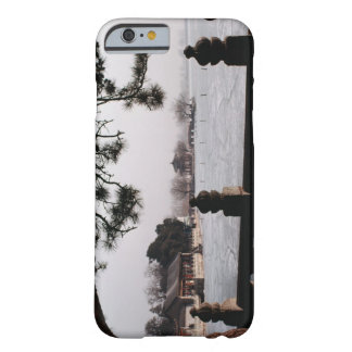 Gate and foliage by frozen lake, China Barely There iPhone 6 Case