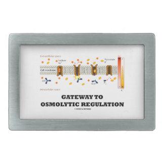 Gateway To Osmolytic Regulation (Active Transport) Belt Buckles