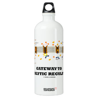 Gateway To Osmolytic Regulation (Active Transport) SIGG Traveller 1.0L Water Bottle