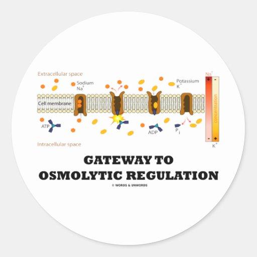 Gateway To Osmolytic Regulation (Active Transport) Sticker